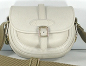 Authentic Dooney and Bourke All Weather Leather Small Webster Pocket Saddle Bag in bone