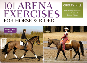 101 Arena exercises; horse, training, riding, exercises, arena, English riding, Western riding, horse books, shoeing, buying, selling, pony, barn, stable, facilities, Cherry Hill, lameness, grooming, showing, bridle, bit, saddle, dressage, hunt seat, western, English, exercise, circles, serpentine, leg yield, sidepass, horsemanship, equitation, rider, aids, bosal, hackamore, walk, trot, canter, lope, halt, stop, back, tack, blanket, arena, round pen, snaffle, curb, noseband, whip, spurs, martingale, behavior, ring, footing, trainer, instructor, judge, exhibitor.