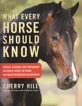 What Every Horse Should Know