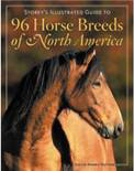 Horse's and Friends Poster book