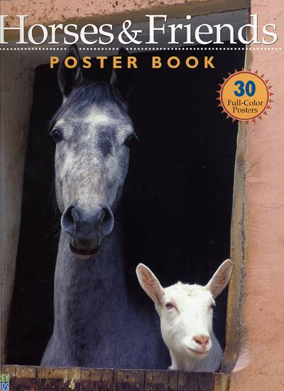 Horses and Friends Poster Book