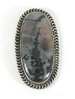 Vintage sterlling silver Petrified Wood Pin