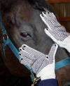Excellent horse grooming gloves.