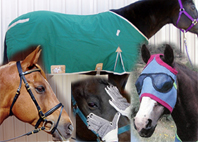 Horse Blankets and other tack